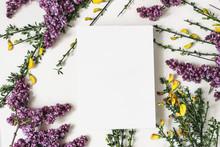Spring Botanical Floral Compos...