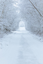 Road In Winter Through A Tunne...