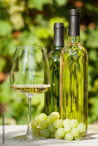 Obraz na plátně White grape and wine