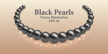 Black Pearl Necklace With Ligh...