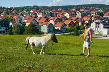 Man And Horse In A Countryside...