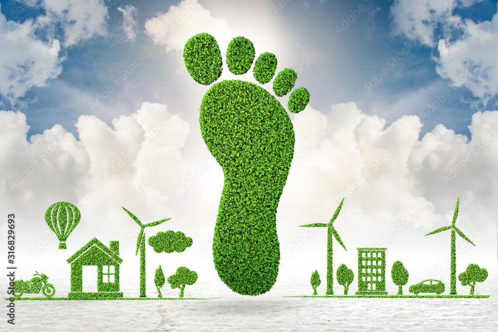 Fototapeta Carbon footprint concept - 3d rendering