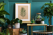 Modern Composition Of Home Garden Filled A Lot Of Beautiful Plants, Cacti, Succulents, Air Plant In Different Design Pots. Stylish Botany Interior.  Mock Up Poster Frame.  Home Gardening Concept