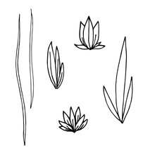Hand Drawn Illustration. A Set...