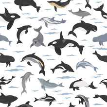 Dolphins Seamless Pattern. Mar...