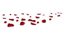 Falling Red Rose Petals Season...