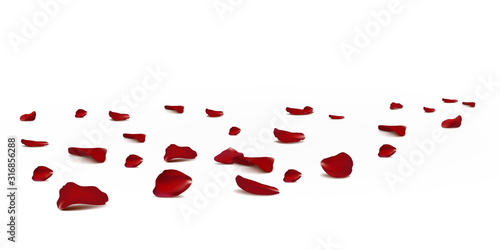 Falling red rose petals seasonal confetti, blossom elements flying isolated Wallpaper Mural