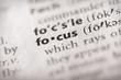 Dictionary Series - Focus