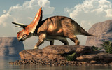 Torosaurus was ceratopsian dinosaur that was a frilled and horned, four legged animal. It lived during the cretaceous period. On a rock by a lake. 3D Rendering