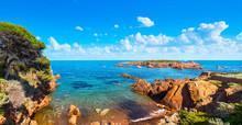 Esterel, Tree, Rocks, Beach An...