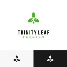 Trinity Leaf Plant Water Droplets Nature Farm Logo Design Inspiration