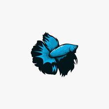 Betta Fish Illustration Logo Inspiration