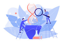 Scientists With Magnifier Looking At Huge DNA In The Pot. Genetically Modified Plants, GM Crops And Biotech Crops Concept On White Background. Pinkish Coral Bluevector Isolated Illustration