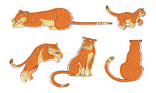 Stylized Tiger Animal In Diffe...