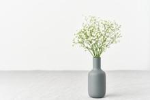 Gypsophila Flowers In A Vase. ...