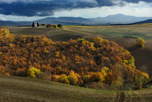 Typical Orcia Valley Autumnal ...