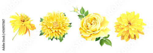 Set of beautiful realistic yellow flowers Wallpaper Mural