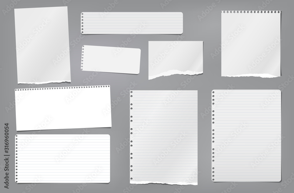 Fototapeta Torn white blank and lined note, notebook paper strips, pieces and sheeds stuck on dark grey background. Vector illustration