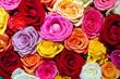 Schwimmende Rosenblüten in einer Schale