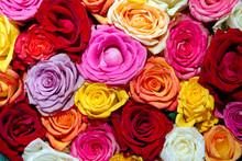 Schwimmende Rosenblüten In Ei...