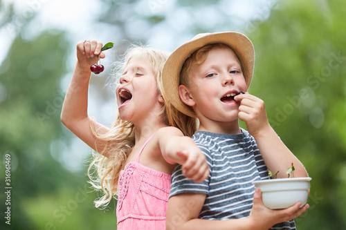 Cuadros en Lienzo Glückliche Kinder essen Kirschen im Garten