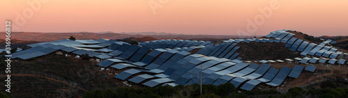 Field of solar panels Wallpaper Mural