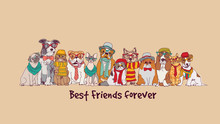 Group Fashion Best Friends Pet...