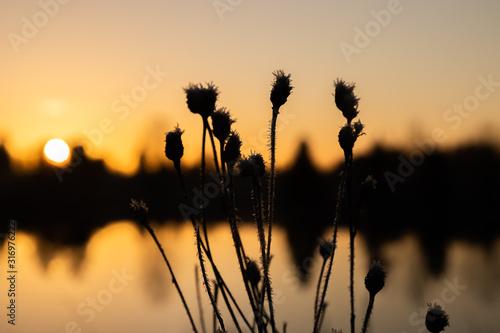 Photo Beautiful sunset on river Kymijoki at winter, Finland.