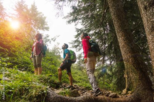 Fotografia Gruppe von Wanderern, die in den Bergen wandern.