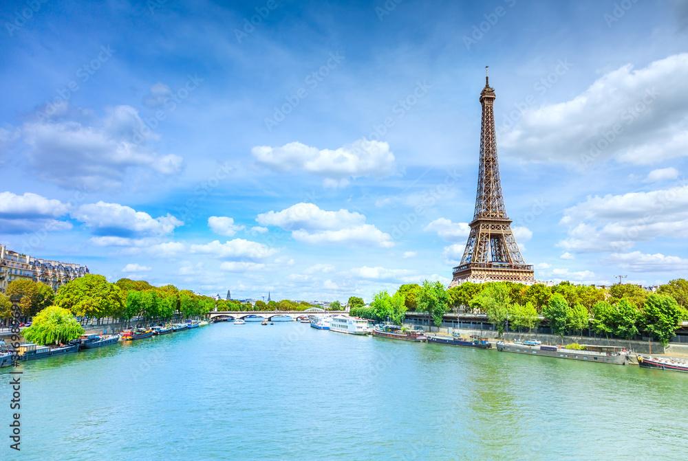Fototapeta View of Paris with Eiffel tower