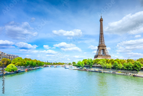 View of Paris with Eiffel tower Canvas Print