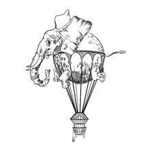 Vector Image Of An Elephant Flying In The Sky. Tattoo Art. T-shirt Design.