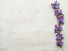 Beautiful, Bright Lilac Lying ...