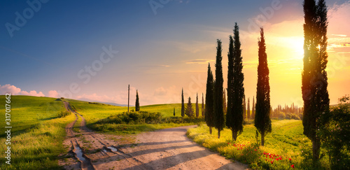 Fototapeta art spring countryside landscape with beautiful farmland and dirt road over sunrise sky obraz