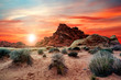 canvas print picture - Sunset hiking on the trails in the Valley of Fire State Park near Las Vegas, Nevada, USA.