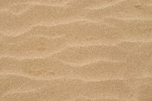 Close Up Detail Sand Texture F...