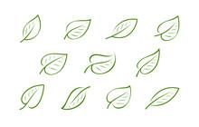 Natural Green Leaf Logo. Natur...
