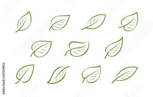 Natural green leaf logo. Nature, ecology icon or symbol vector Wallpaper Mural