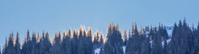 Mountain Peaks With Fir Trees ...