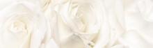 Botanical Concept, Wedding Inv...