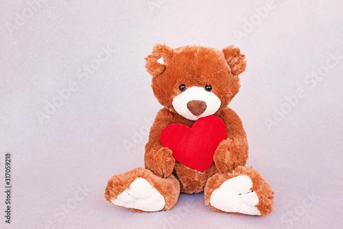 Plush cute toy Teddy Bear holding a red heart #317059218