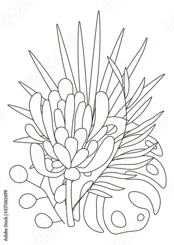 Hand Drawing Coloring Pages For Children And Adults Linear Style Flower Coloring Book For Creative Creativity Antistress Coloring Book With Tropical Flowers Protea Orchid Monstera Palm Buy This Stock Vector And