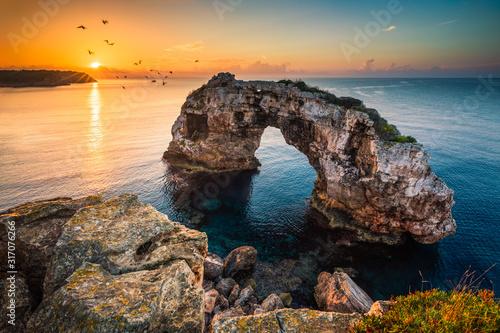 Photo Es Pontas, natural ach in Mallorca with birds