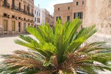 Ciutadella Old Town On Menorca Island