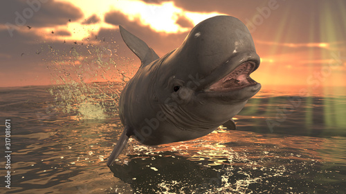 Cute white beluga whle leaping over ocean surface 3d rendering Wallpaper Mural
