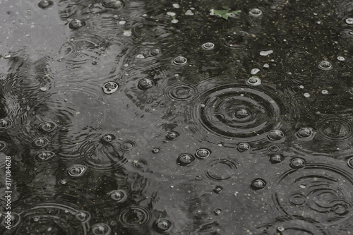 Fotografia background puddle rain / circles and drops in a puddle, texture with bubbles in