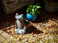 A Confident Frog Statue Sits In A Garden, As Decoration In Front Of A Lush Green Potted Plant