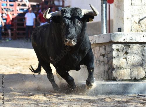 toro español en una plaza de toros
