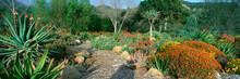 Garden At Center For Earth Con...