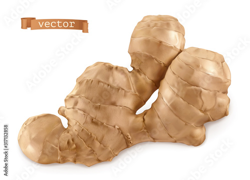 Photo Ginger root. 3d realistic vector